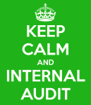 Auroville Internal Audit required